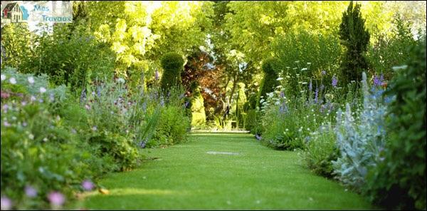 Allier espaces verts, artisan spécialisé en Création de jardins, pelouses et de parcs