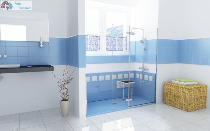 Logo de DOUCHE SENIOR FRANCE, société de travaux en Fourniture et pose de lavabos, baignoires, douches, WC...