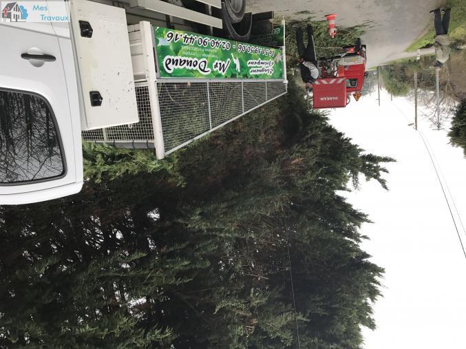 Logo de ENTREPRISE DOUAUD, société de travaux en Abatage d'arbres