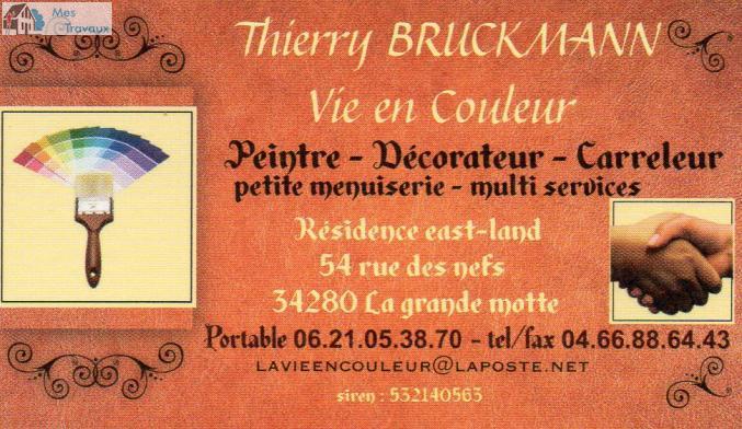Logo de VIE EN COULEUR (BRUCKMANN THIERRY), société de travaux en Travaux de décoration