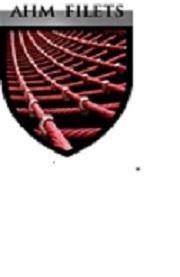 Logo de AHM FILETS, société de travaux en Travaux divers
