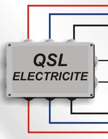 Logo de Qualite service leader, société de travaux en Installation électrique : rénovation complète ou partielle
