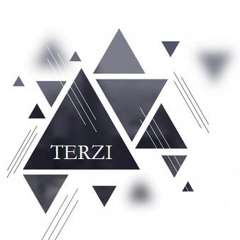Logo de TERZI, société de travaux en Pose d'isolation thermique dans les combles