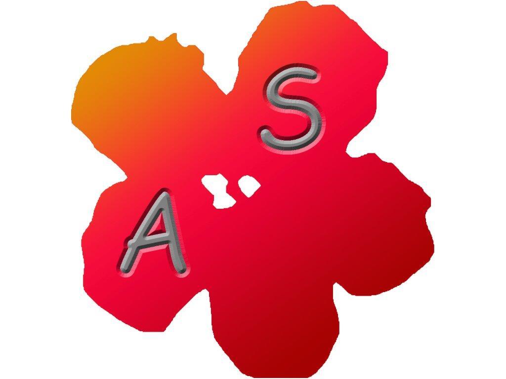 Logo de ALTERNATIVE SERVICES, société de travaux en Fourniture et pose de parquets flottants
