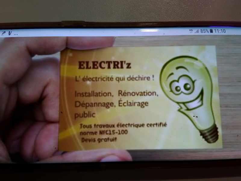 Logo de Electri'z, société de travaux en Installation électrique : rénovation complète ou partielle