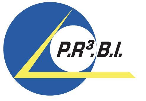 Logo de PR3BI sarl, société de travaux en Dallage ou pavage de terrasses