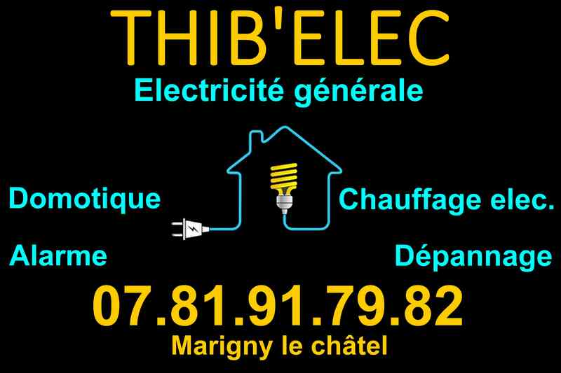 Logo de Thib'elec, société de travaux en Dépannage électrique