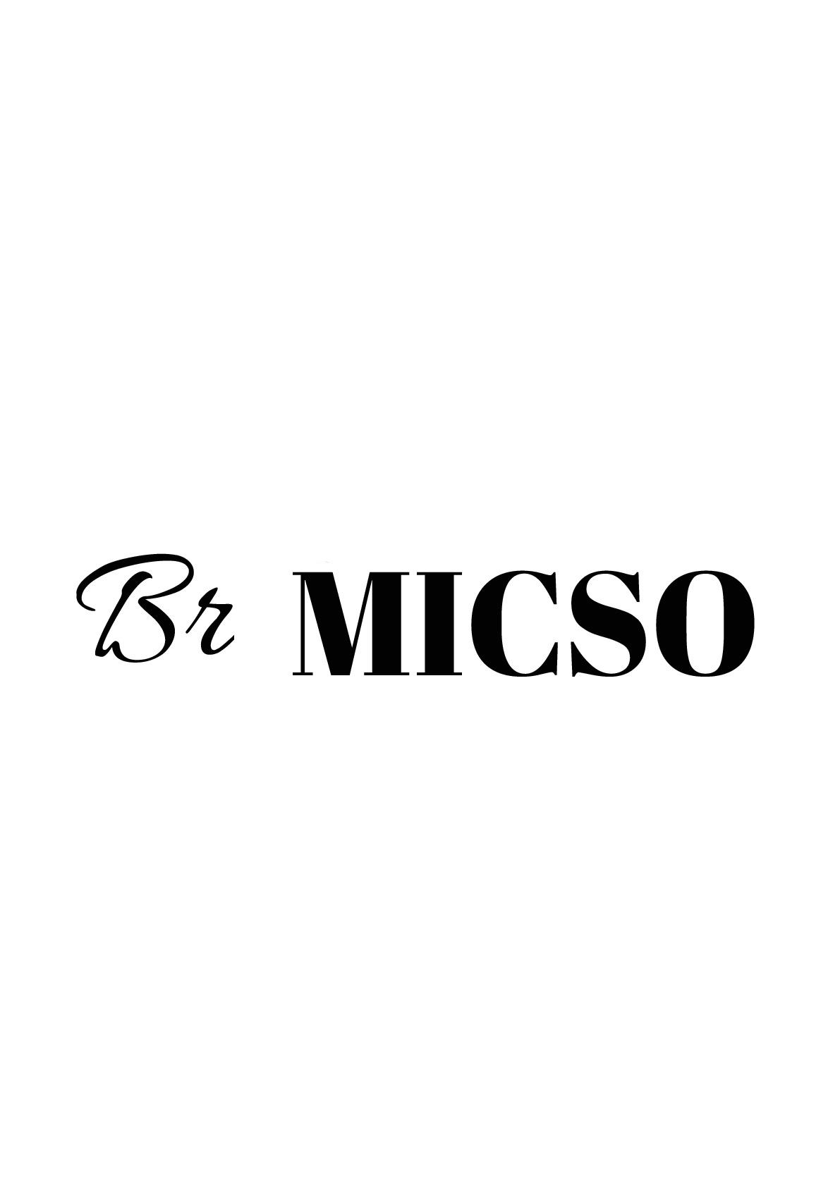 Logo de BR-MICSO, société de travaux en Garages / Abris de jardin