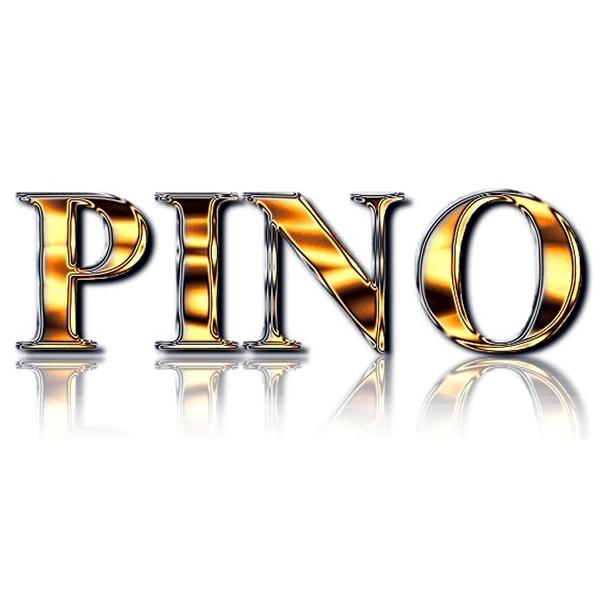 Logo de Pino, société de travaux en Construction & Rénovation de cloisons