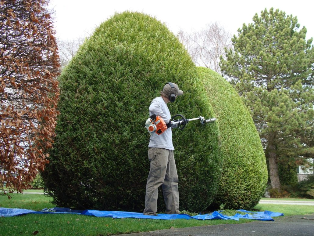 Hoffmann jardinier, artisan spécialisé en Entretien de jardin (ponctuel ou à l'année)