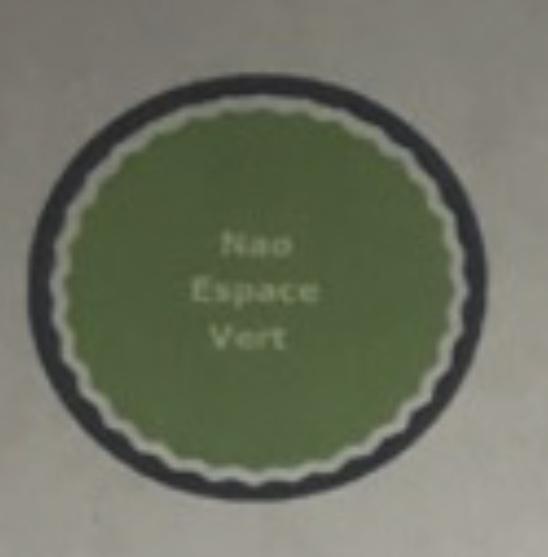 Logo de Nao espace vert, société de travaux en Abatage d'arbres