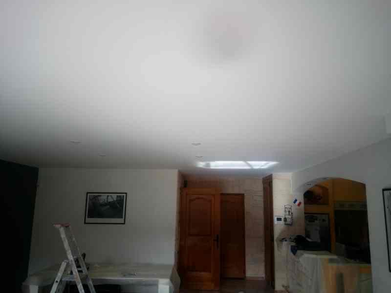 Logo de Pictosud, société de travaux en Peinture : mur, sol, plafond