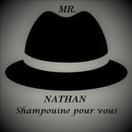 MR NATHAN SAS