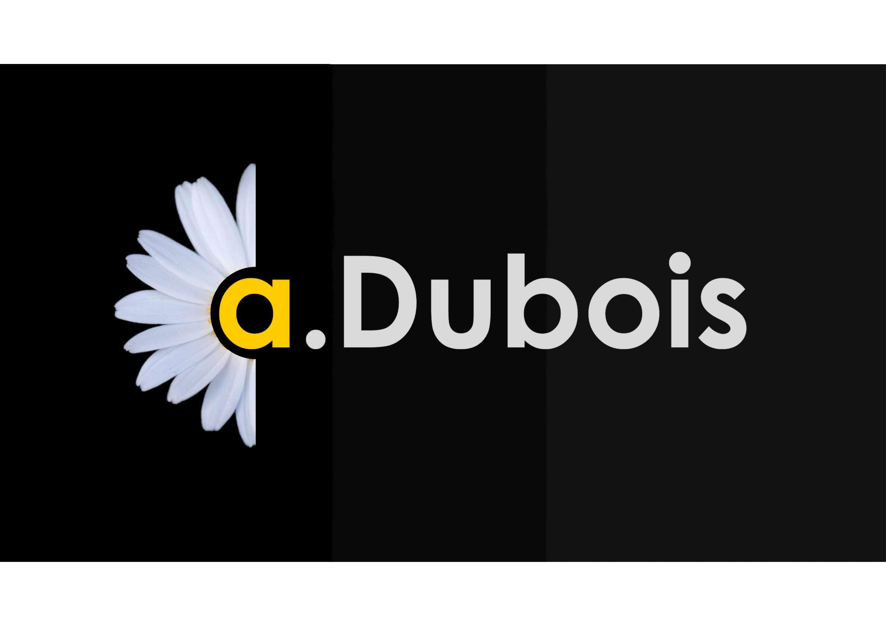 Logo de ALBAN DUBOIS, société de travaux en Installation électrique : rénovation complète ou partielle